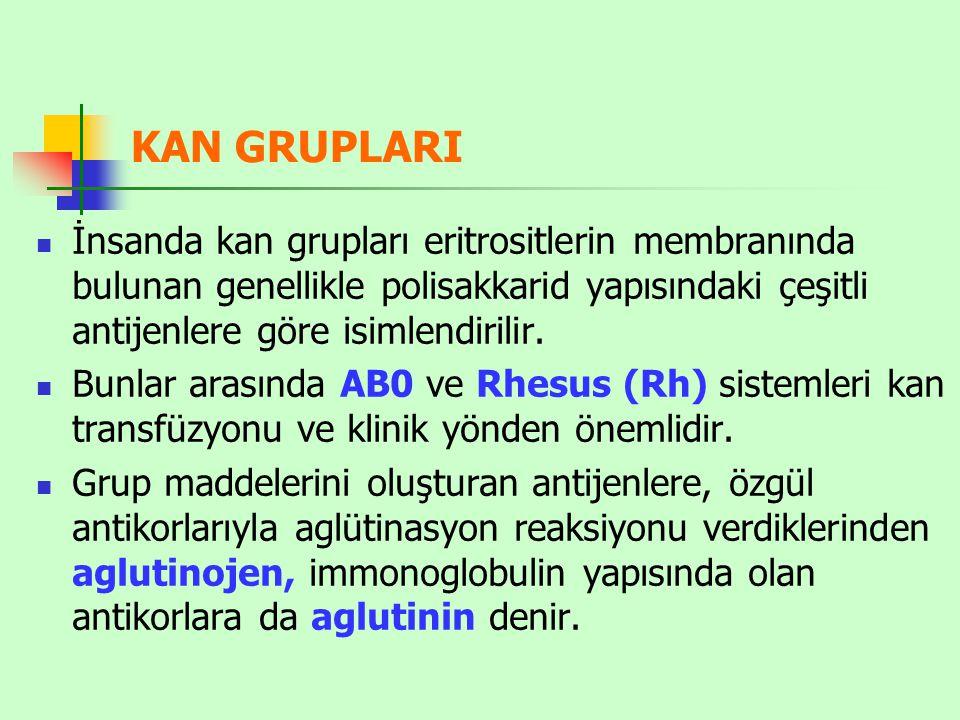 KAN GRUPLARI İnsanda kan grupları eritrositlerin membranında bulunan genellikle polisakkarid yapısındaki çeşitli antijenlere göre isimlendirilir.