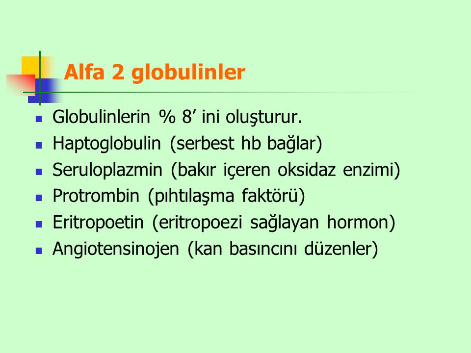Alfa 2 globulinler Globulinlerin % 8' ini oluşturur.