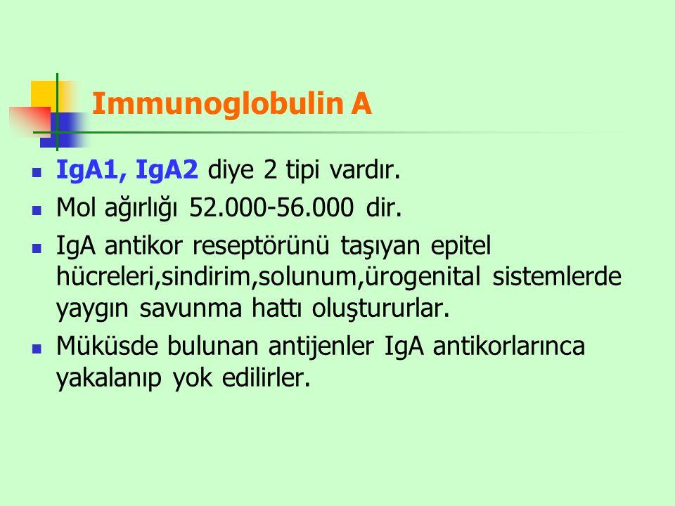 Immunoglobulin A IgA1, IgA2 diye 2 tipi vardır.