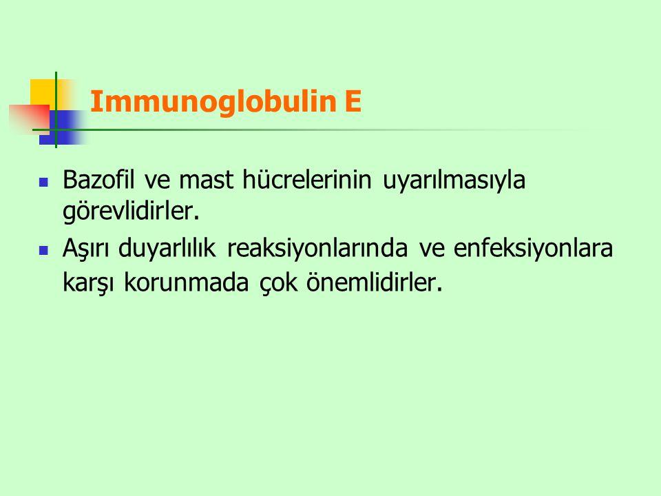 Immunoglobulin E Bazofil ve mast hücrelerinin uyarılmasıyla görevlidirler.