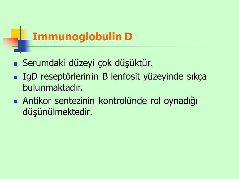 Immunoglobulin D Serumdaki düzeyi çok düşüktür.
