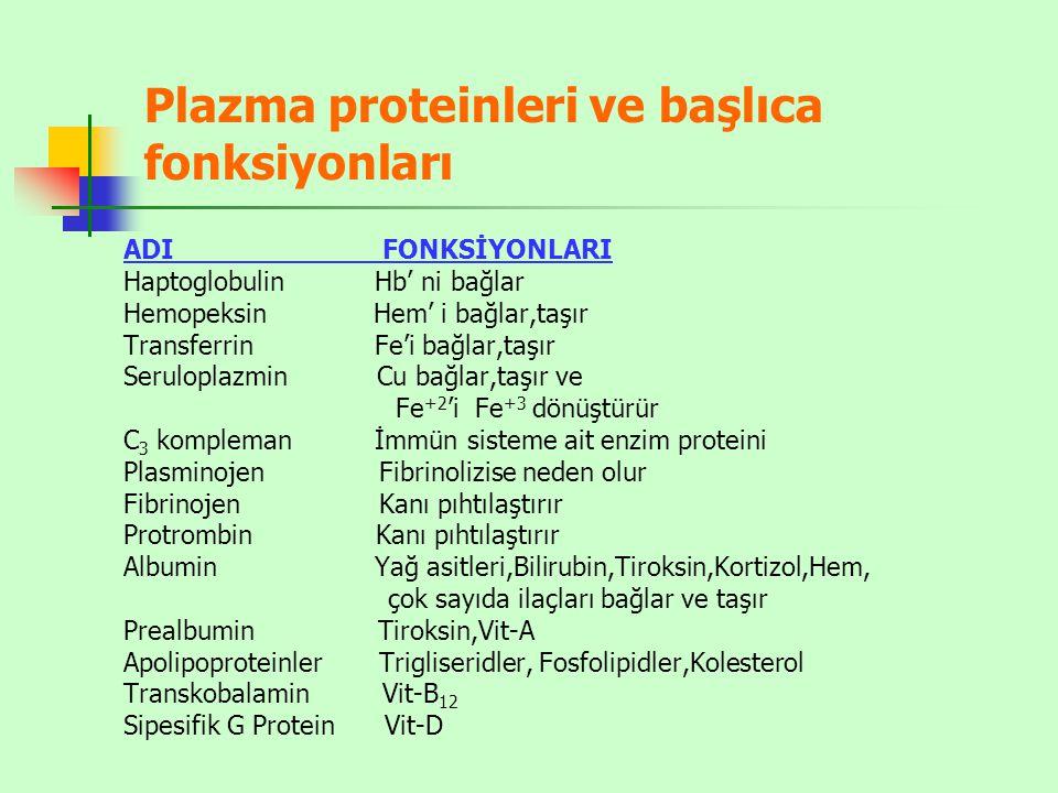 Plazma proteinleri ve başlıca fonksiyonları