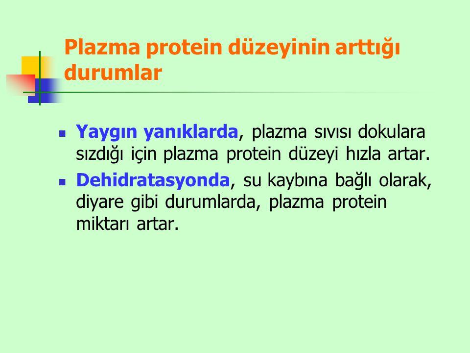Plazma protein düzeyinin arttığı durumlar