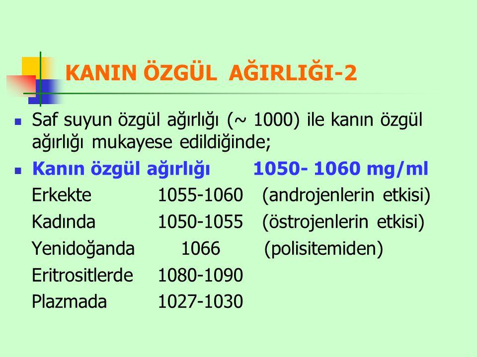 KANIN ÖZGÜL AĞIRLIĞI-2 Saf suyun özgül ağırlığı (~ 1000) ile kanın özgül ağırlığı mukayese edildiğinde;