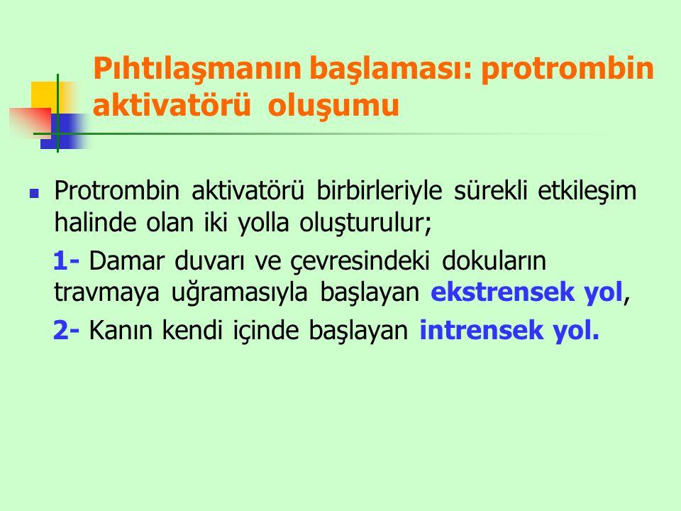 Pıhtılaşmanın başlaması: protrombin aktivatörü oluşumu