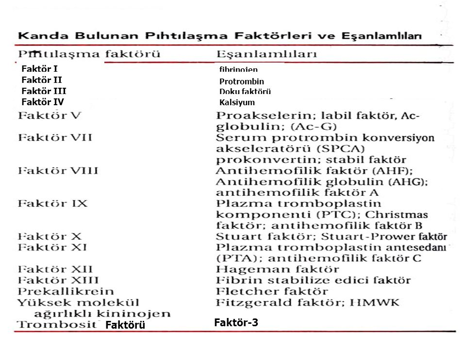 Faktör-3 Faktörü Faktör I Faktör II Faktör III Faktör IV fibrinojen