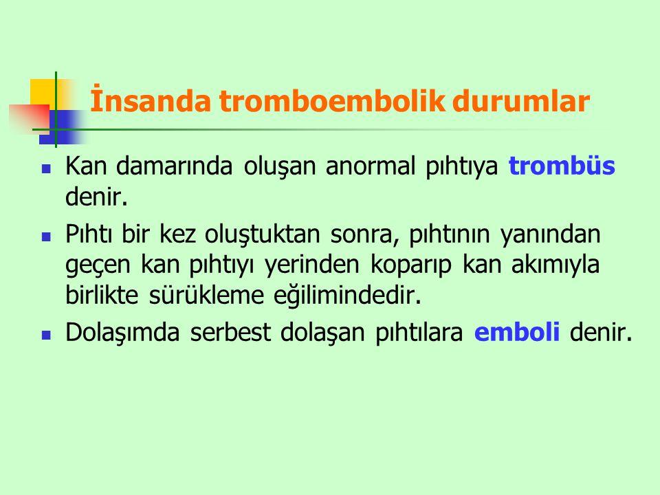 İnsanda tromboembolik durumlar
