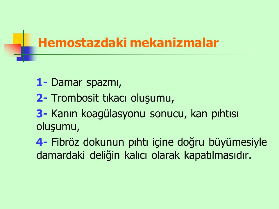 Hemostazdaki mekanizmalar