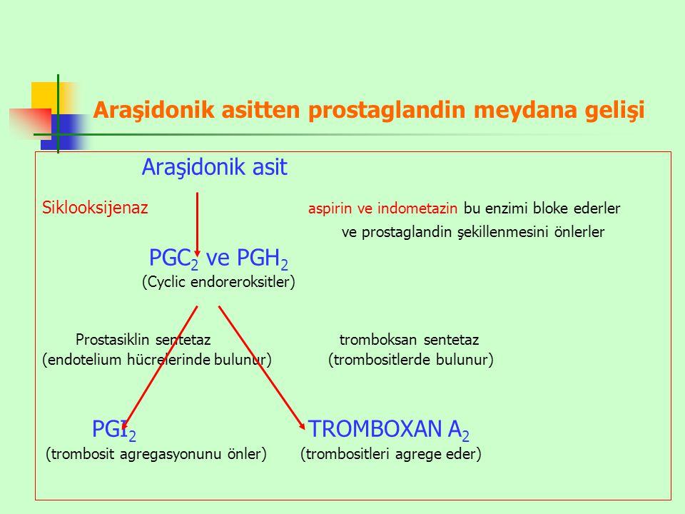 Araşidonik asitten prostaglandin meydana gelişi