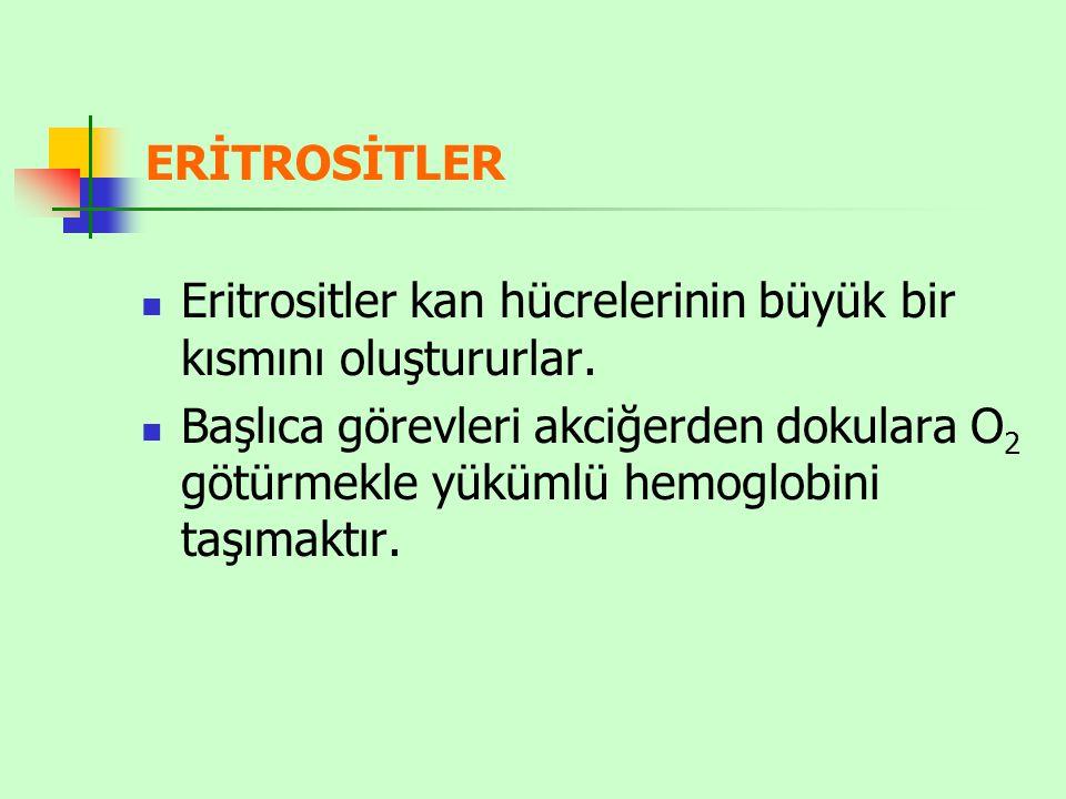 ERİTROSİTLER Eritrositler kan hücrelerinin büyük bir kısmını oluştururlar.