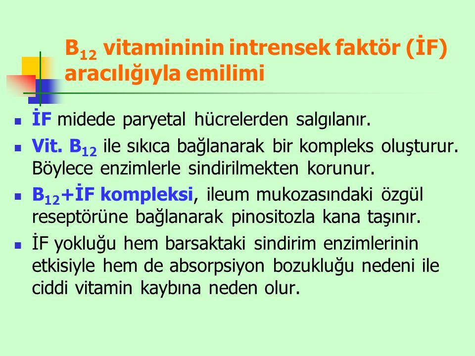 B12 vitamininin intrensek faktör (İF) aracılığıyla emilimi