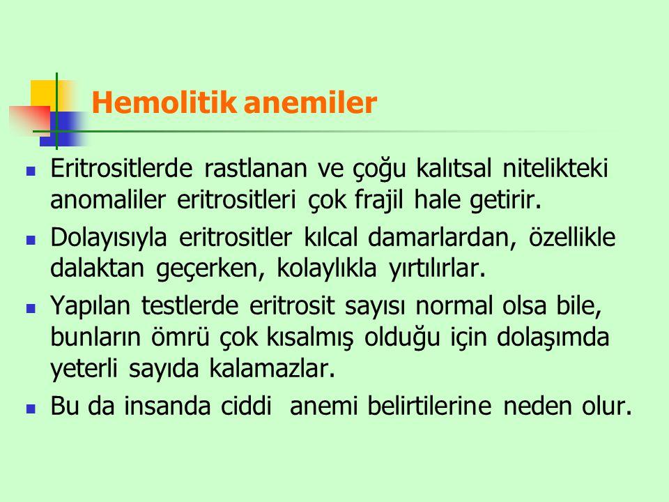 Hemolitik anemiler Eritrositlerde rastlanan ve çoğu kalıtsal nitelikteki anomaliler eritrositleri çok frajil hale getirir.
