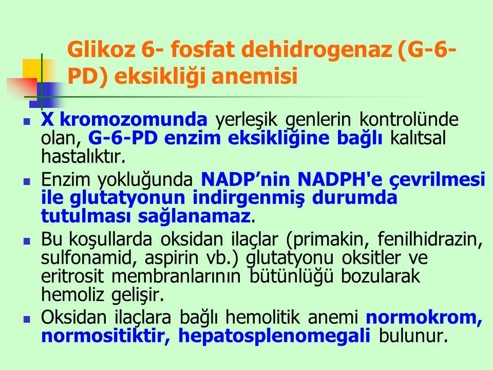 Glikoz 6- fosfat dehidrogenaz (G-6-PD) eksikliği anemisi