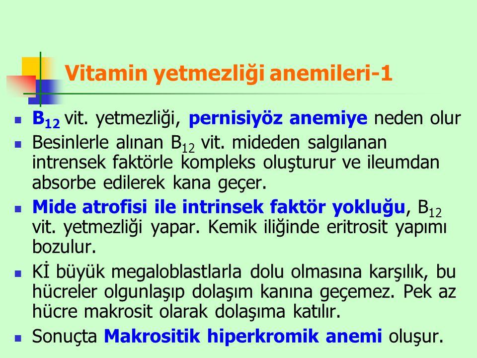 Vitamin yetmezliği anemileri-1