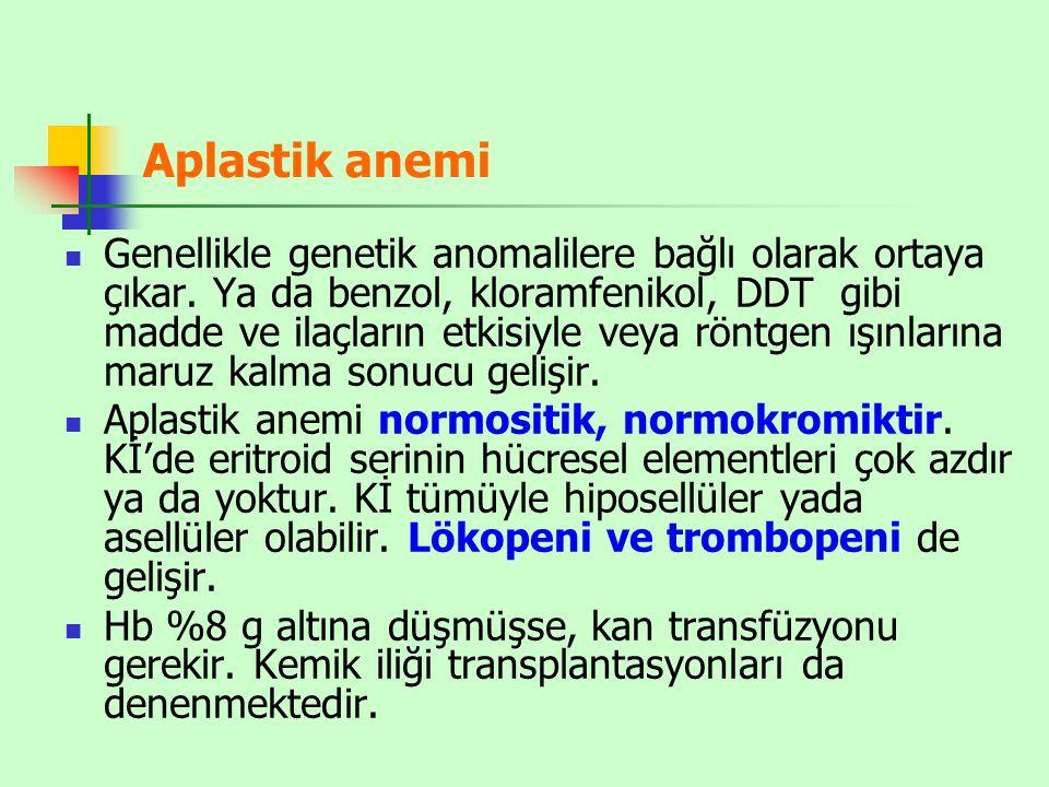 Aplastik anemi