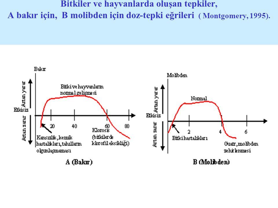 Bitkiler ve hayvanlarda oluşan tepkiler, A bakır için, B molibden için doz-tepki eğrileri ( Montgomery, 1995).