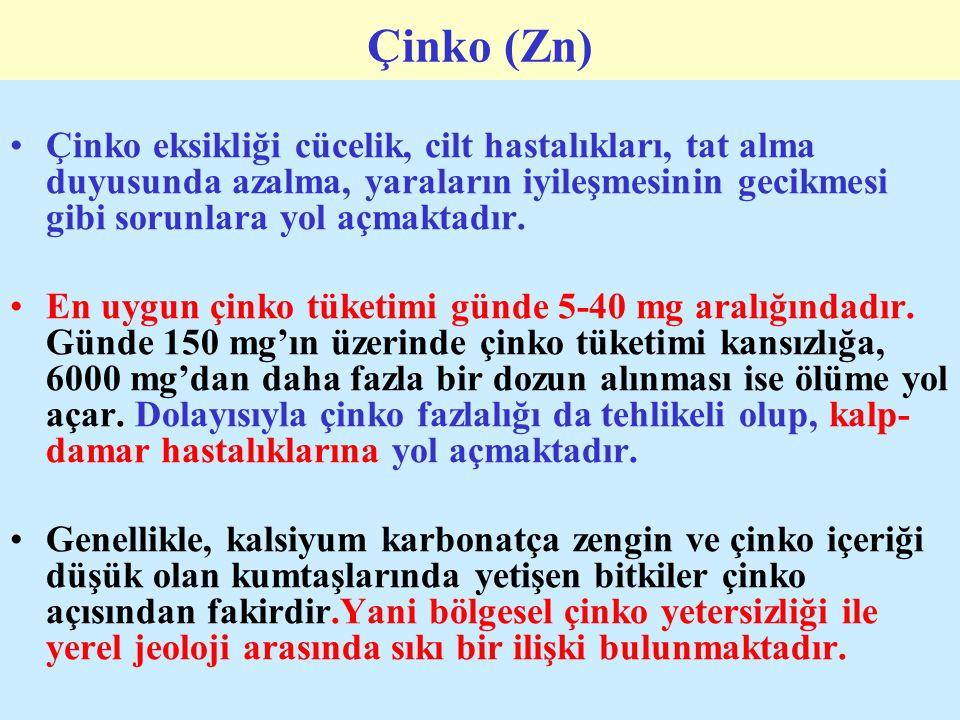 Çinko (Zn) Çinko eksikliği cücelik, cilt hastalıkları, tat alma duyusunda azalma, yaraların iyileşmesinin gecikmesi gibi sorunlara yol açmaktadır.