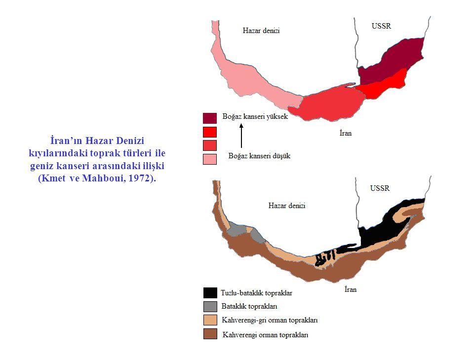 İran'ın Hazar Denizi kıyılarındaki toprak türleri ile geniz kanseri arasındaki ilişki (Kmet ve Mahboui, 1972).