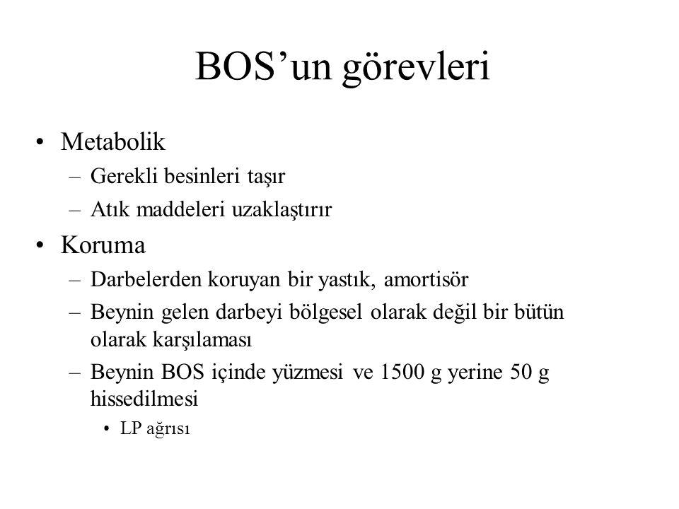 BOS'un görevleri Metabolik Koruma Gerekli besinleri taşır