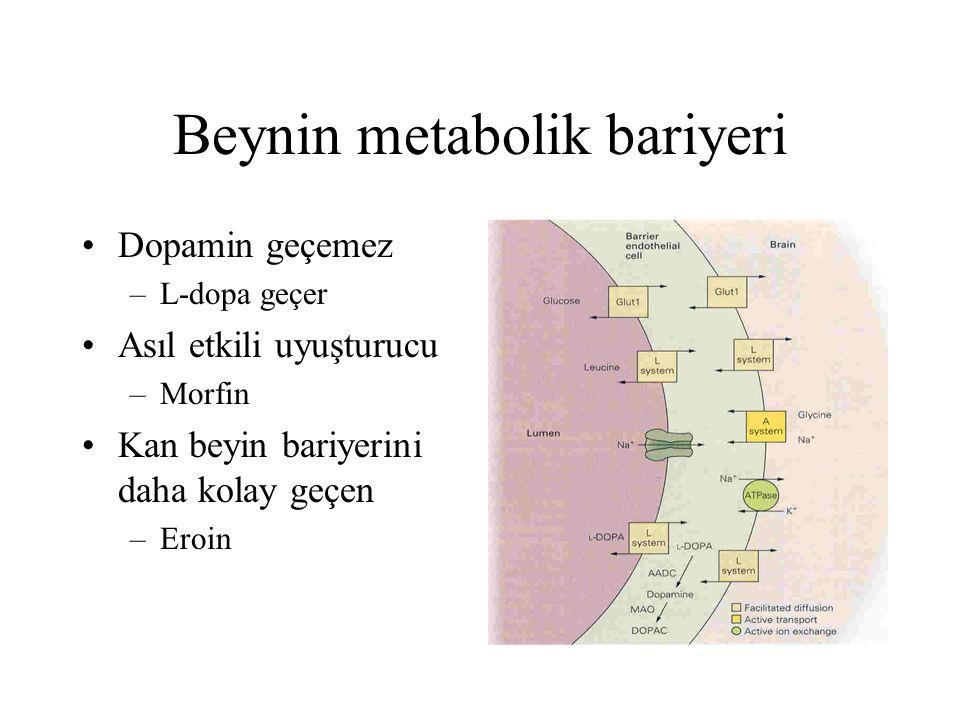 Beynin metabolik bariyeri