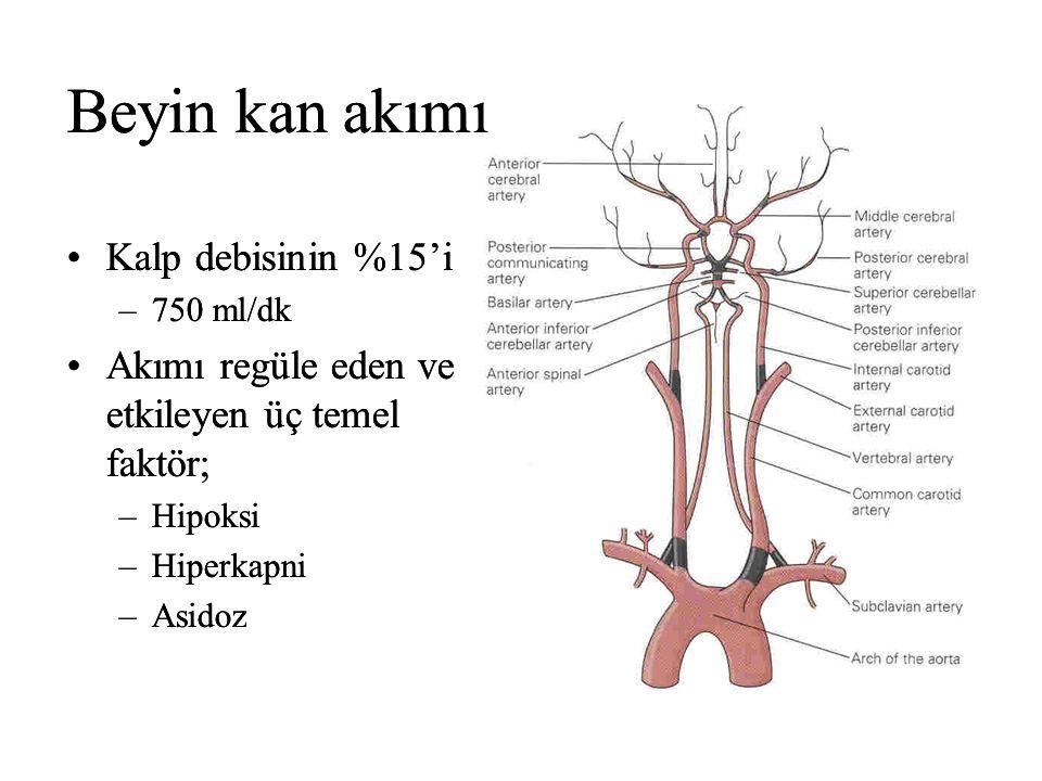 Beyin kan akımı Beyin kan akımı Kalp debisinin %15'i