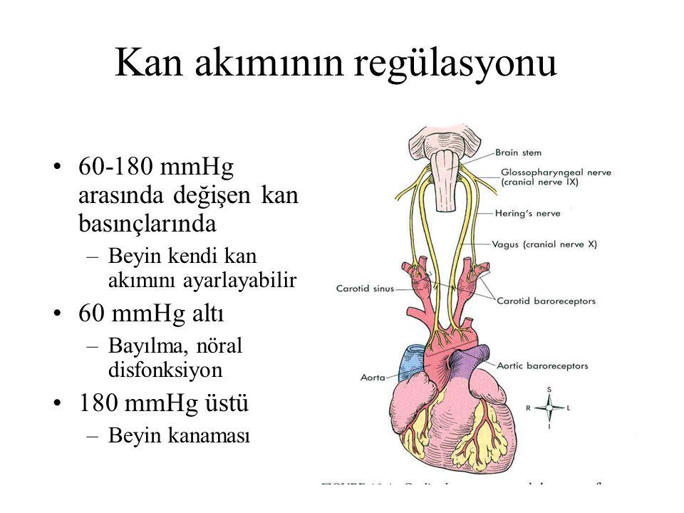 Kan akımının regülasyonu