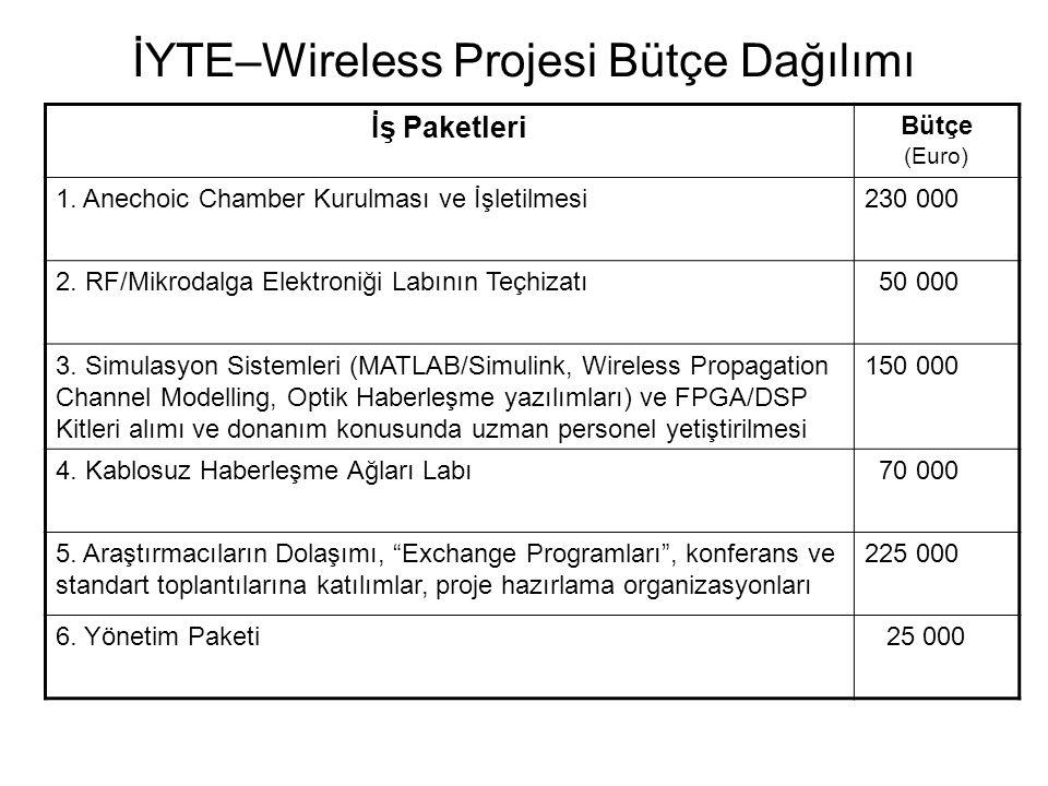 İYTE–Wireless Projesi Bütçe Dağılımı