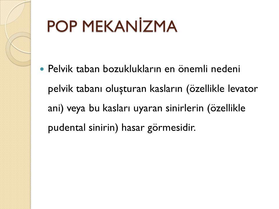 POP MEKANİZMA