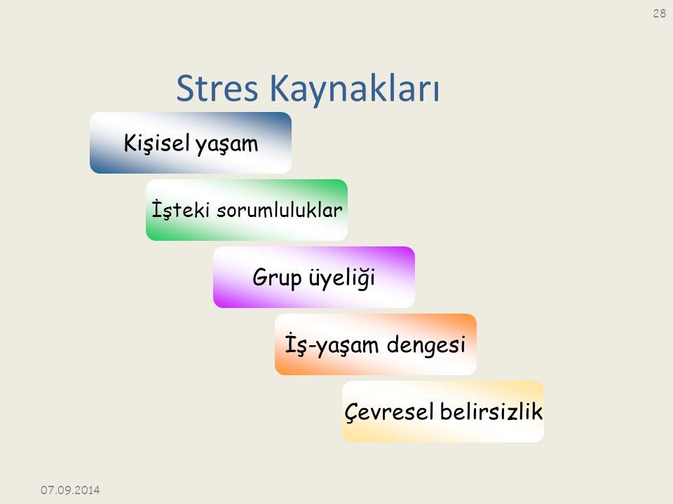 Stres Kaynakları Kişisel yaşam Grup üyeliği İş-yaşam dengesi