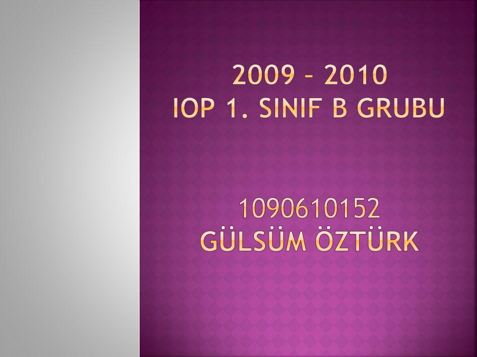 2009 – 2010 IOP 1. SINIF B GRUBU 1090610152 GÜLSÜM ÖZTÜRK