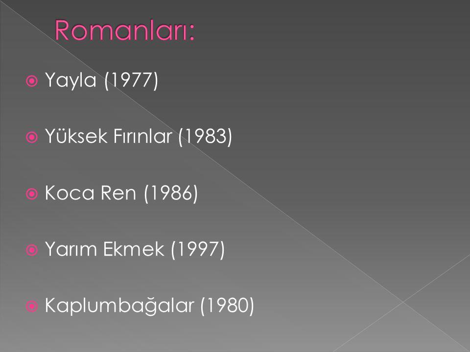 Romanları: Yayla (1977) Yüksek Fırınlar (1983) Koca Ren (1986)