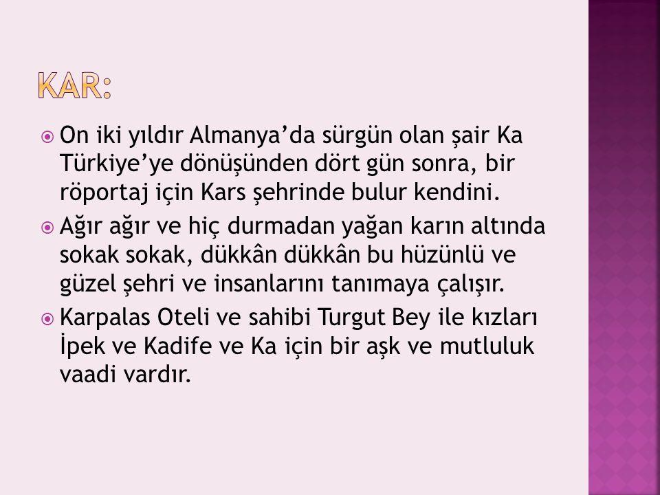 Kar: On iki yıldır Almanya'da sürgün olan şair Ka Türkiye'ye dönüşünden dört gün sonra, bir röportaj için Kars şehrinde bulur kendini.