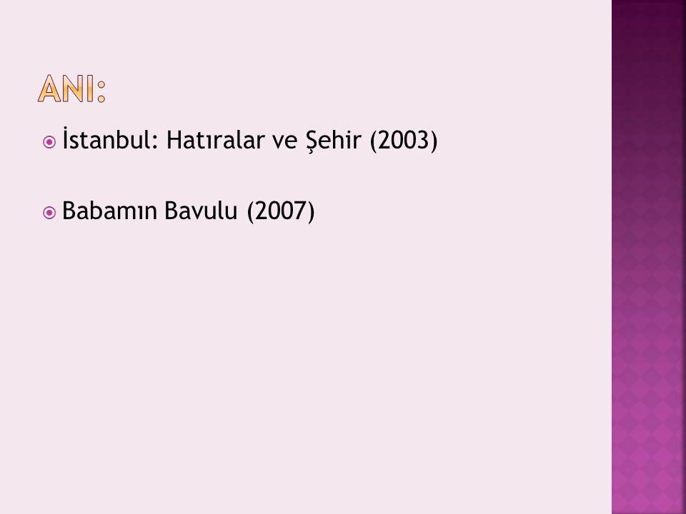 AnI: İstanbul: Hatıralar ve Şehir (2003) Babamın Bavulu (2007)