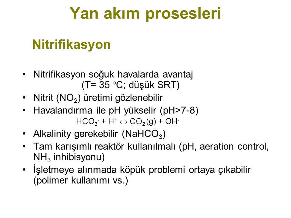 Yan akım prosesleri Nitrifikasyon