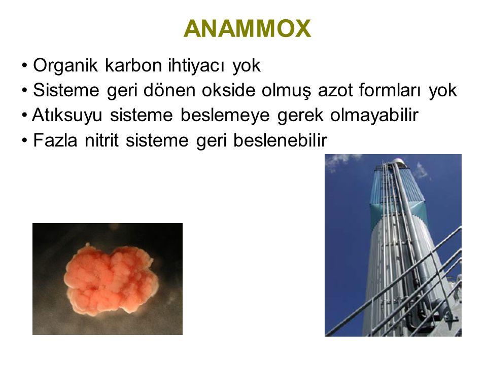 ANAMMOX Organik karbon ihtiyacı yok