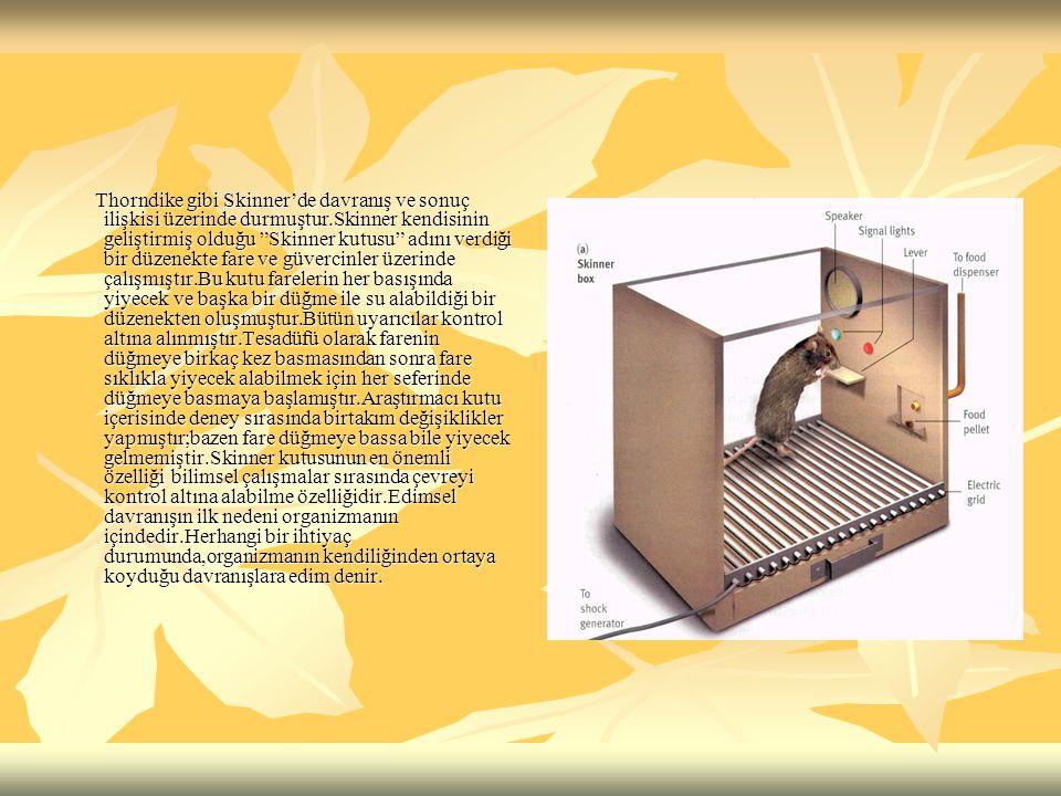 Thorndike gibi Skinner'de davranış ve sonuç ilişkisi üzerinde durmuştur.Skinner kendisinin geliştirmiş olduğu Skinner kutusu adını verdiği bir düzenekte fare ve güvercinler üzerinde çalışmıştır.Bu kutu farelerin her basışında yiyecek ve başka bir düğme ile su alabildiği bir düzenekten oluşmuştur.Bütün uyarıcılar kontrol altına alınmıştır.Tesadüfü olarak farenin düğmeye birkaç kez basmasından sonra fare sıklıkla yiyecek alabilmek için her seferinde düğmeye basmaya başlamıştır.Araştırmacı kutu içerisinde deney sırasında birtakım değişiklikler yapmıştır;bazen fare düğmeye bassa bile yiyecek gelmemiştir.Skinner kutusunun en önemli özelliği bilimsel çalışmalar sırasında çevreyi kontrol altına alabilme özelliğidir.Edimsel davranışın ilk nedeni organizmanın içindedir.Herhangi bir ihtiyaç durumunda,organizmanın kendiliğinden ortaya koyduğu davranışlara edim denir.