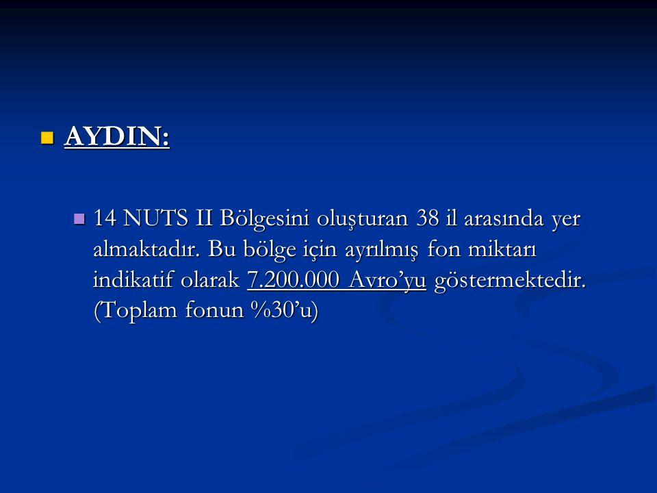 AYDIN: