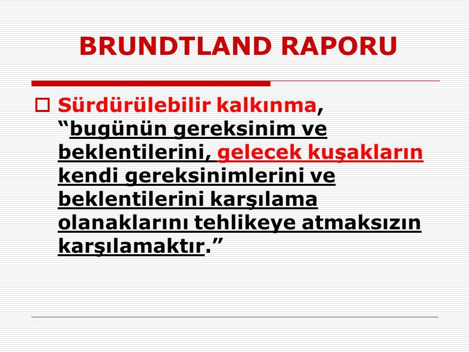 BRUNDTLAND RAPORU