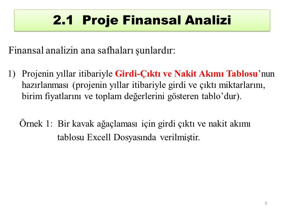 2.1 Proje Finansal Analizi