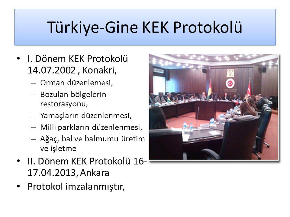 Türkiye-Gine KEK Protokolü