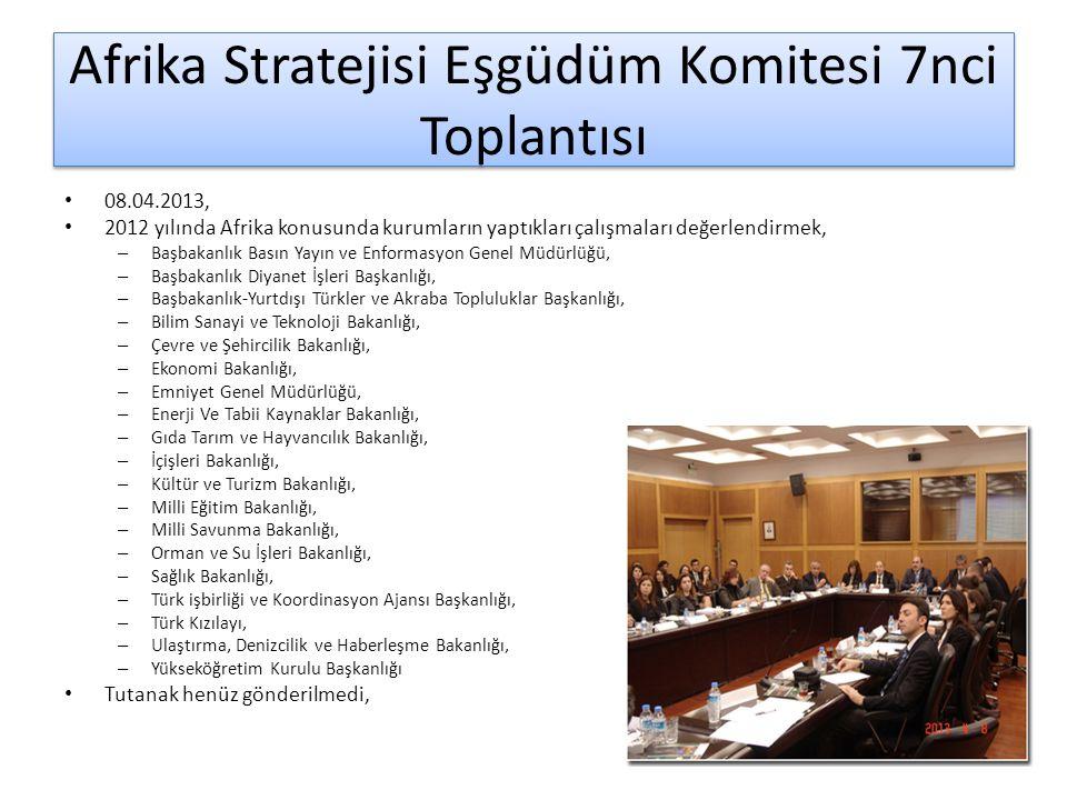 Afrika Stratejisi Eşgüdüm Komitesi 7nci Toplantısı