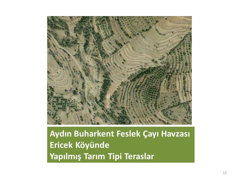 Aydın Buharkent Feslek Çayı Havzası Ericek Köyünde Yapılmış Tarım Tipi Teraslar