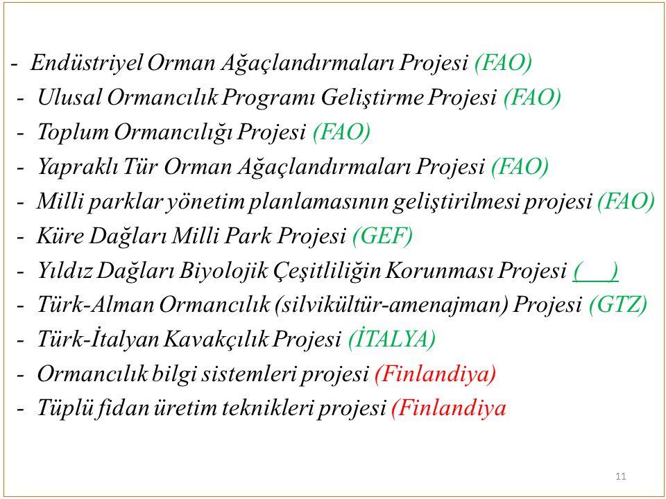 - Endüstriyel Orman Ağaçlandırmaları Projesi (FAO) - Ulusal Ormancılık Programı Geliştirme Projesi (FAO) - Toplum Ormancılığı Projesi (FAO) - Yapraklı Tür Orman Ağaçlandırmaları Projesi (FAO) - Milli parklar yönetim planlamasının geliştirilmesi projesi (FAO) - Küre Dağları Milli Park Projesi (GEF) - Yıldız Dağları Biyolojik Çeşitliliğin Korunması Projesi ( ) - Türk-Alman Ormancılık (silvikültür-amenajman) Projesi (GTZ) - Türk-İtalyan Kavakçılık Projesi (İTALYA) - Ormancılık bilgi sistemleri projesi (Finlandiya) - Tüplü fidan üretim teknikleri projesi (Finlandiya