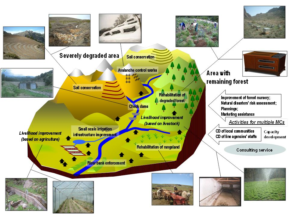 Integrated Watershed Development Approach (Case of one micro-catchment (MC))