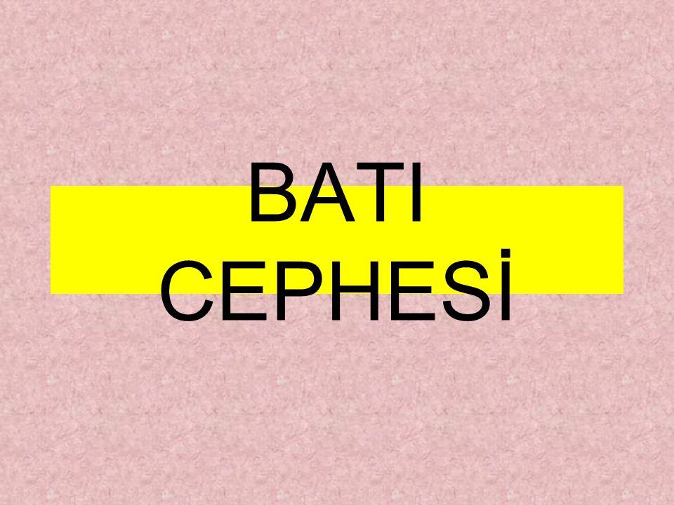 BATI CEPHESİ