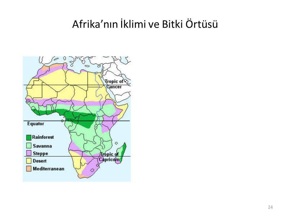 Afrika'nın İklimi ve Bitki Örtüsü