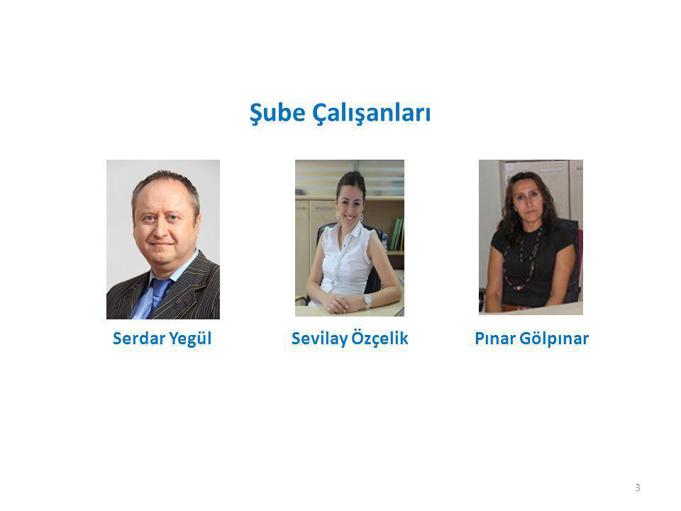 Serdar Yegül Sevilay Özçelik Pınar Gölpınar