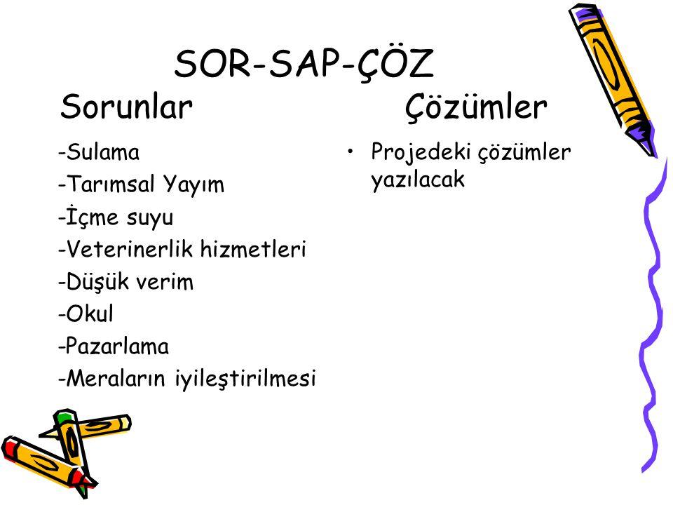 SOR-SAP-ÇÖZ Sorunlar Çözümler