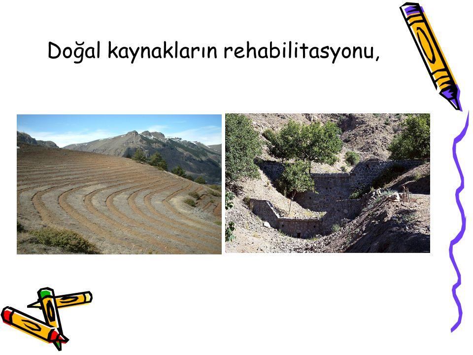 Doğal kaynakların rehabilitasyonu,