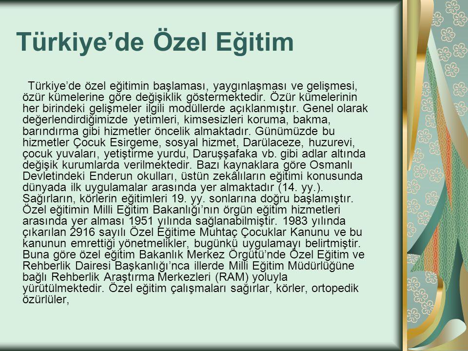 Türkiye'de Özel Eğitim